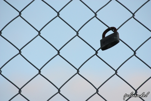 JR-misc padlock on fence