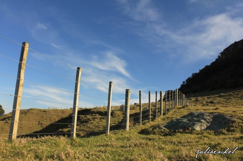 Mt Maunganui, NZ