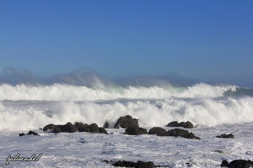 JuliaRachel Photography - Big waves, Owhiro Bay