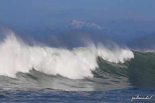 juliarachel-waves-owhirobay