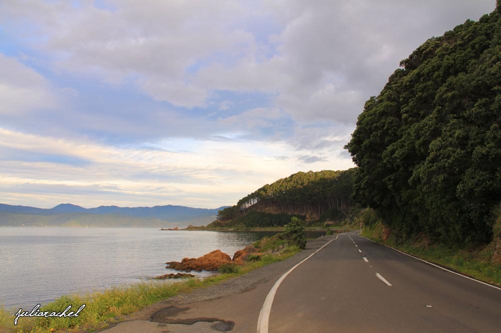 juliarachel-coastal-road-wellington