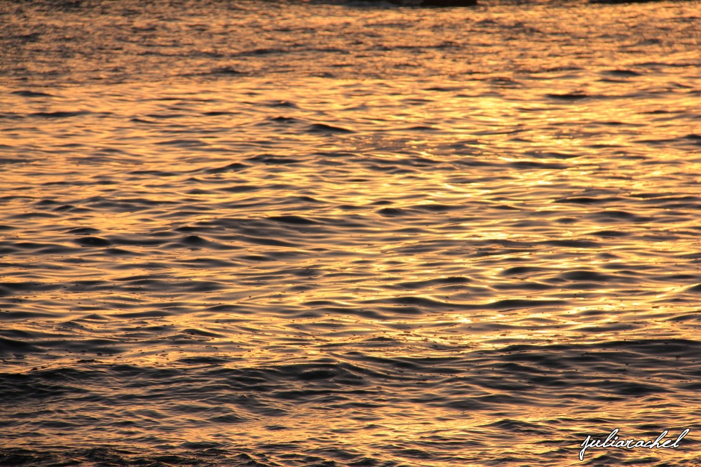 juliarachel photography sunset ocean