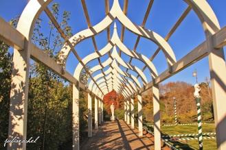juliarachel-arch-pathway