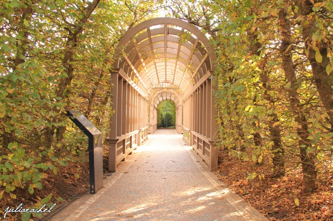 juliarachel-hamilton-gardens-arch