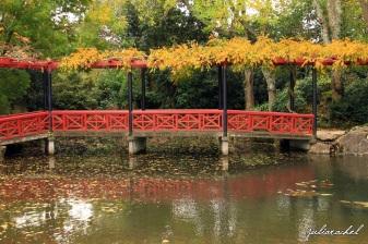 juliarachel-hamilton-gardens-chinese
