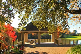 juliarachel-hamilton-gardens