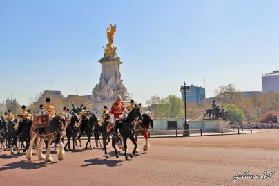 day-2-buckingham-palace-horses-2-juliarachel