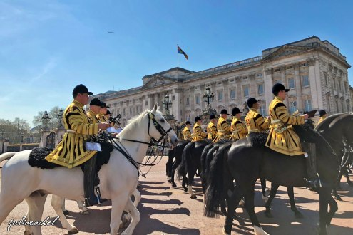 day-2-buckingham-palace-horses-juliarachel