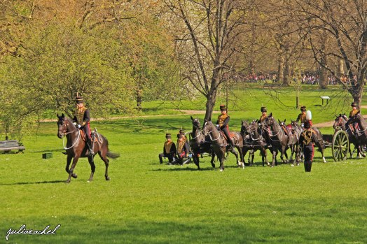day-2-hyde-park-horses-juliarachel