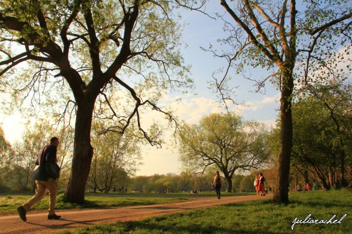 day-4-hampstead-heath