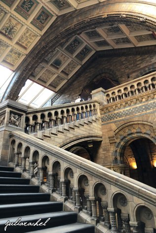 day-4-natural-history-museum-stairs